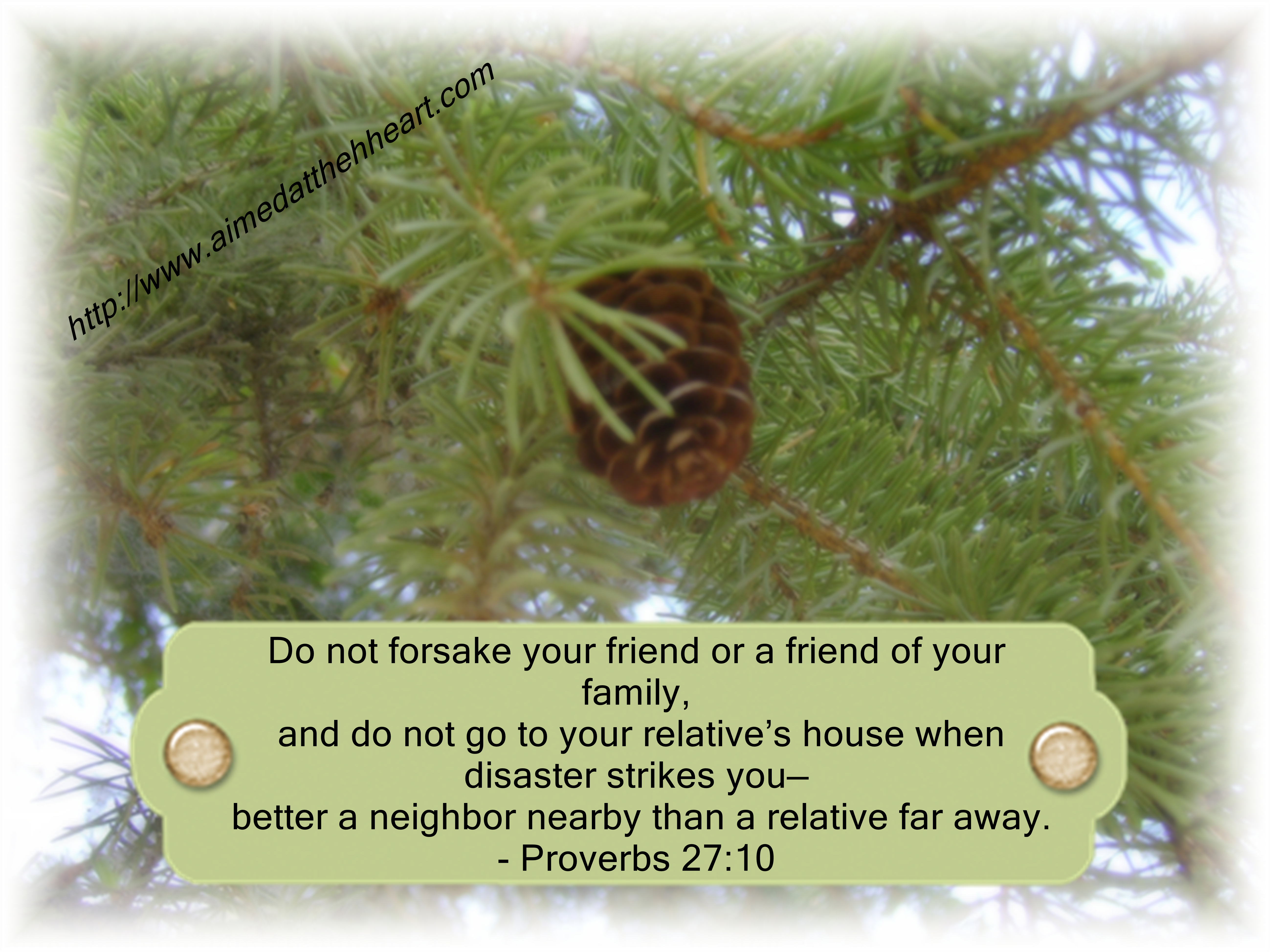 proverbs 27:10 importance of support