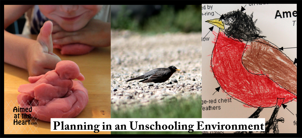 How I Am Planning Our Unschooling Year - Aimed at the Heart