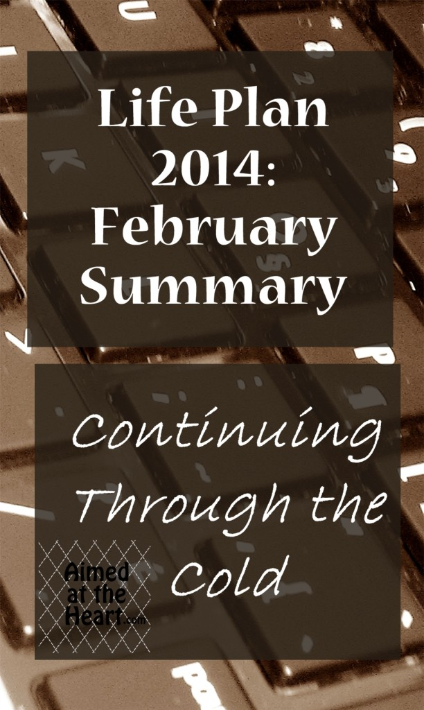 Life Plan 2014: February Summary - Aimed at the Heart