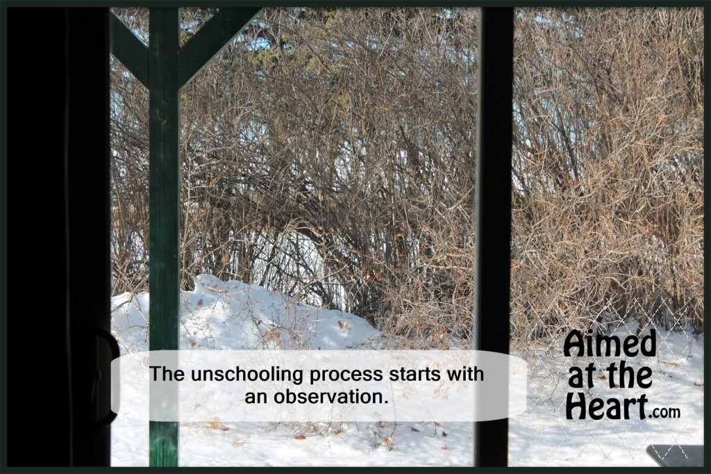 The unschooling process starts with an observation - Aimed at the Heart