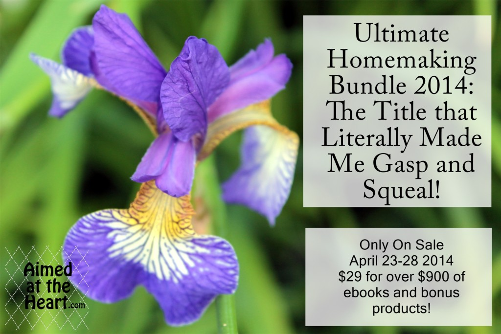 The Title I'm most excited about (and you should be too!) The Ultimate Homemaking Bundle