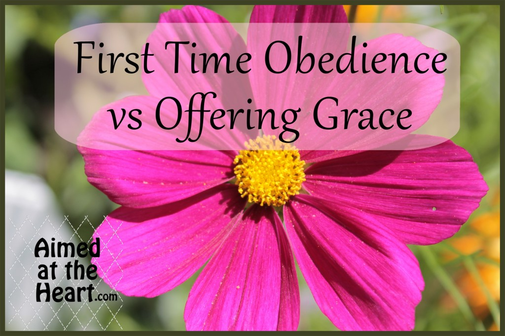 First Time Obedience vs Offering Grace - Aimed at the Heart