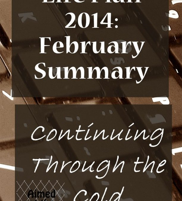 Life Plan 2014: February Summary